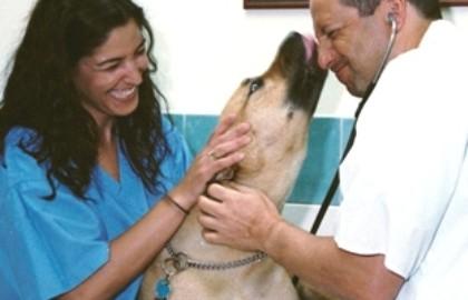 תמונות מהמרפאה