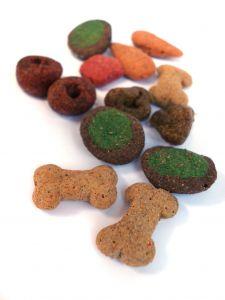 מזון בריא לכלבים