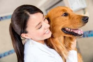 חיסון משושה לכלבים